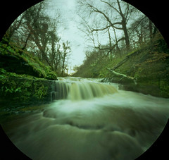 Lingering at the Lynn (wheehamx) Tags: pinhole lynn waterfall dalry ayrshire dacora digna