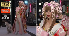 walking in Harajuku district (nicandralaval1) Tags: silveryk kimono japan fashion secondlife secondlifefashion hair gacha maitreya lelutka bento mesh firestormviewer roleplay japonica baroqued {anc} harajuku tokyo
