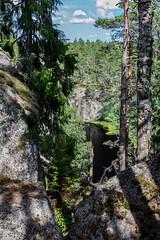 Schweden 08 393-1 (Andre56154) Tags: schweden08 schweden sweden sverige wald forest see lake wasser water landschaft landscape