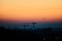 Cranes (Michal Zawolek) Tags: krakow kraków krakau cracow soft dusk twilight nightfall tree trees crane cranes cityatnight nightshot city cityscape cityscapes highcontrast contrast goldenhour golden blue hour bluehour