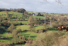 Sunny Sunday across the Valley (Halliwell_Michael ## Offline mostlyl ##) Tags: brighouse hoveedge redbeckvalley westyorkshire nikond40x 2019 trees baretrees pylons landscapes green brighouseecho