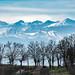 Pyrénées_0872