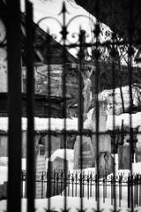 DFL_8437-01 (MILESI FEDERICO) Tags: milesi milesifederico milesifedericofoto federicomilesifoto inmontagna nikon nikond7100 nital iamnikon europa europe francia france savoie visitfrance nevache alpi alpicozie alps alpes chiesa croce 2018 bianconero bw biancoenero blackandwhite monocromatico