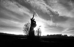 Liberty (Dave.Miles) Tags: tree wombourne himley olympus olympusom10 ilfordfp4plus ilford zuiko 24mmzuiko redfilter sunrise ilfotecddx anthonygormley 35mm 35mmfilm film filmisnotdead