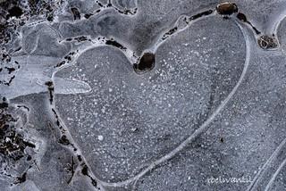 Happy Valentine to all