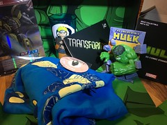 february loot crate 2019 (timp37) Tags: toys loot crate february 2019 hulk