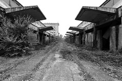 Civiltà perdute (Lo.Re.79) Tags: abandoned building concrete decay emptyspaces exploration forgotten industry italy outdoor rotten rottenplaces urban urbex