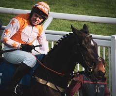 DSC_0856 (fullerton42) Tags: straftford racecourse stratfordracecourse horse horses racehorse horseracing race punter punters specatators sport equine england