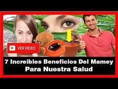 7 Increibles Beneficios Del Mamey Para Nuestra Salud (SaludNatural01) Tags: 7 increibles beneficios del mamey para nuestra salud