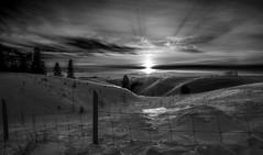 La fin de l'hiver n&b (martinmenard757) Tags: martin menard fin de lhiver noiretblanc nb bw landscape paysage quebecois