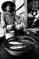 Hoi An, Vietnam (alexjones30) Tags: balckandwhite vietnam hoian canon market travel explore