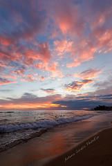 Esplosioni di rosa (Antonio Ciriello PhotoEos) Tags: pink rosa colors colours colori mare sea nuvole clouds seascapes seascape sabbia sand beach spiaggia sanvito taranto puglia italia apulia italy nature natura canon 5dmarkiv 5d eos5dmarkiv canoneos5dmarkiv 1635f4 canon1635 1635