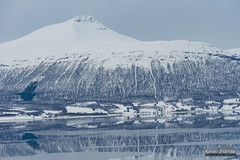 Arctic Ocean Ice (kevin-palmer) Tags: norway arctic europe winter march snow snowy arcticocean sea water fjord ice icy frozen mountains nikond750 nikon180mmf28 telephoto reflection cloudy overcast scandinavianmountains balsfjorden cold tromscounty