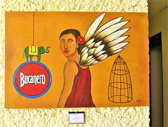 Bucanero (knightbefore_99) Tags: mexico mexican art painting tropical oaxaca dreams huatulco awesome best fantastic wing aile bucanero cage elephant woman