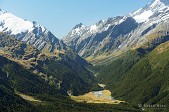 20190206-93-Shovel Flat below Mt Aspiring (Roger T Wong) Tags: 2019 aspiringnationalpark cascadesaddletrack nz nationalpark newzealand rogertwong sel24105g sony24105 sony2470fe24105mmf4goss sonya7iii sonyalpha7iii sonyilce7m3 southisland westmatukitukivalley bushwalk hike mountain mountains outdoors tramp trek walk