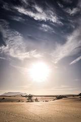 Fuerteventura_2019_04 (ichbinsEvi) Tags: natur landscape fujifilmxt2 fujifilm sunset beach dünen spain fuerteventura corralejo