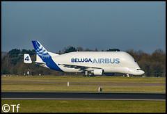F-GSTD - Manchester Airport (Tf91) Tags: airbus a300 a300st fgstd beluga super transporter manchester manchesterairport egcc man