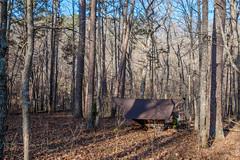 Camped near Crooked Branch (Gary Allman) Tags: offtrail fujifilmxe3 backpacking devilsbackbonewilderness hammockcamping gsa pottersville missouri unitedstatesofamerica us