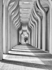 Animula vagula blandula (Riccio1968) Tags: lightsandshadows mosque colonnade alone man monochrome bw blackandwhite bnw urbanphotography streetlife streetstyle perspective streetphotography street italy rome