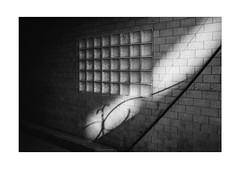 Shadow of the Poet (Thomas Listl) Tags: thomaslistl blackandwhite biancoenegro noiretblanc monochrome 35mm squares diagonal lines geometry geometric wall bricks fence shadow lightandshadow contrasts poetry