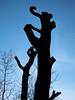skinningrove-saltburn_20181230_060.jpg (opticalsandwich) Tags: microfourthirds hfs12060 saltburnbysea lumixphotography yorkshire skinningrove panasoniclumix lumixgx80