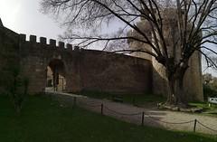 Muralla de Castillo de Granadilla Caceres 02 (Rafael Gomez - http://micamara.es) Tags: muralla de castillo granadilla caceres