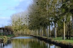 Canal du Berry at Mennetou/Cher (p.marteville) Tags: water st georges sur cher reflection tree sky canal berrry france abigfave