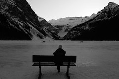 Lonely Seat (Mr. Happy Face - Peace :)) Tags: hbm benchmonday happybenchmonday fairmount chateau hotel cans2s stranger lonely snowcaps mountains banff nationalpark canadaparks art2019 woman evening activities bw snow lakelouise yyc
