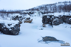 Flowing Beneath (kevin-palmer) Tags: abisko sweden swedishlapland arctic march winter cold snow snowy ice icy frozen nikond750 europe water abiskoriver birch trees scandinavianmountains cliffs tamron2470mmf28 cloudy overcast