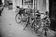 Amsterdam19-075-50mm (Dan Bachmann) Tags: amsterdam 2019 europe netherlands leica m10 leicam10 bicycle bicycles nederland