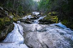 Upper Dewey Lake trail, Skagway AK (spruce_dweller) Tags: upper dewey lake trail skagway alaska waterfall water forest nature