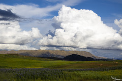 Cusco (Kusi Seminario) Tags: clouds nubes sky cielo field campo mountains montañas green verde crops tarwi landscape paisaje cusco chincero maras peru southamerica latinamerica outdoors nature sheeps ovejas andes andean comulus