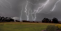 Wow That Was Close (Steve W3) Tags: lightning lightshow greatoceanroad otway farm cows storm ngc