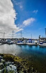 Coronado Springs (dweible1109) Tags: 18140mmnikkor d5600 nikon skyline skyscape sky cloudscape clouds marina boats coronadosprings california