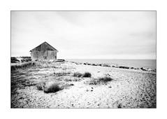 Quelle maison est ma maison... ? (Scubaba) Tags: europe france pasdecalais noirblanc noiretblanc bw blackwhite monochrome maison house mer sea sable sand