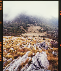 Scan-190108-0004-2a (Mario (⌐■_■)) Tags: velebit mountain croatia lika hiking outside nature rock grass fog clouds pentax 67 analog film mediumformat kodak ektachrome 45mm wideangle canon 9000f justpentax forest tree landscape