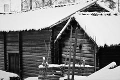 6Q3A9197 (www.ilkkajukarainen.fi) Tags: antti seurasaari lumi snow winter talvi blackandwhite monochrome mustavalkoinen suomi finland finlande eu europa scandinavia helsinki pihapiiri happy life visit travel travelling perinteinen suomalainen