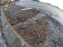 Icy Rocks on the Shore Path (brownpau) Tags: goprosession goprohero4session barharbor maine rocks