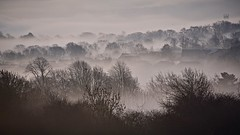 Huddersfield West Yorkshire 5th February 2019 (loose_grip_99) Tags: huddersfield westyorkshire yorkshire valley mist fog winter monochrome shadows cityscape church sunrise dawn february 2019 england uk flickrsbest