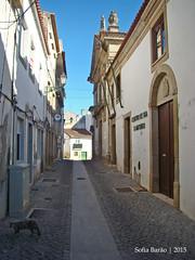 Igreja de Santo António, Castelo Branco 03 (Sofia Barão) Tags: portugal beira baixa castelo branco