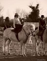 _DSC0710 (chris30300) Tags: camargue cheval