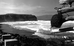 Barbara Beach (salparadise666) Tags: zorki 3m industar 22 rollei retro 80s caffenol cl 45min nils volkmer kb 35mm film analogue rangefinder azores landscape shoreline bw black white monochrome