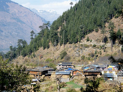 Himachal Pradesh, India (east med wanderer) Tags: india himachalpradesh naggar kulluvalley village forest mountains worldtrekker