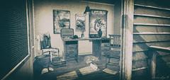 View Through The Door (larisalyn (Rachel)) Tags: radio cat chair door flowers desk papers secondlife vintage monochrome cabin