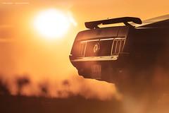 Grabber Blue 1970 Mustang Mach1 - Shot 2 (Dejan Marinkovic Photography) Tags: 1970 ford mustang mach1 fastback american muscle car classic backlight gegenlicht sundown sunshine sun sky