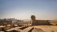 Sphinx, Giza, Egypt (pas le matin) Tags: giza gizeh sphinx pyramids egypt ancient architecture travel world voyage égypte pyramides antiquity antiquié art sculpture cairo lecaire afrique africa sky ciel ruines ruins canon 7d canon7d canoneos7dé canoneos7d eos7d
