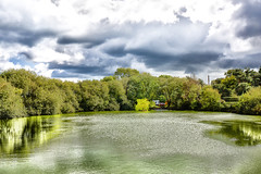 Green Reflections (jamesromanl17) Tags: lake idyllic pond landscape landscapes cheshire unitedkingdom uk britain countryside reflection reflections green summer warm tree water sky skies rural clouds cloud cloudscape cloudy light sun sunlight