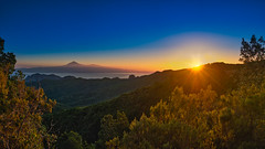 Amanecer @ Mirador del Cedro (Jörg Bergmann) Tags: 2019 elcedro islascanarias lumixg20f17 lagomera miradordelcedro panasonic20mmf17 panasonicdmcgf7 pancake parquenacionaldegarajonay sonnenaufgang teide tenerife amanecer canarias canaryislands early españa forest gf7 gomera hiver invierno january leverdusoleil lumix lumix20mm m43 mft micro43 microfourthirds morning panasonic panorama spain stitched sunrise travel vacation wallpaper winter μ43