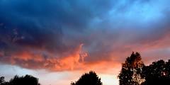[ Day of pink storm ] (Chris Séhenna) Tags: ciel sky cielo nuages clouds nube bleu blue azul rose pink rosa arbres trees árboles silhouettes siluetas orageux stormy tempestuoso méditation meditation meditación prière prayer oración spiritualité spirituality espiritualidad