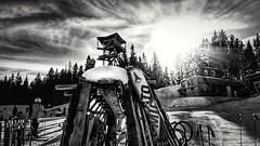 Winter sunshine 💕 (Photolover03) Tags: blackandwhite semmering austria winter landscape happy holiday